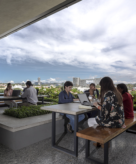 Los espacios al aire libre de Andares Corporativos son ideales para incrementar la productividad y creatividad.